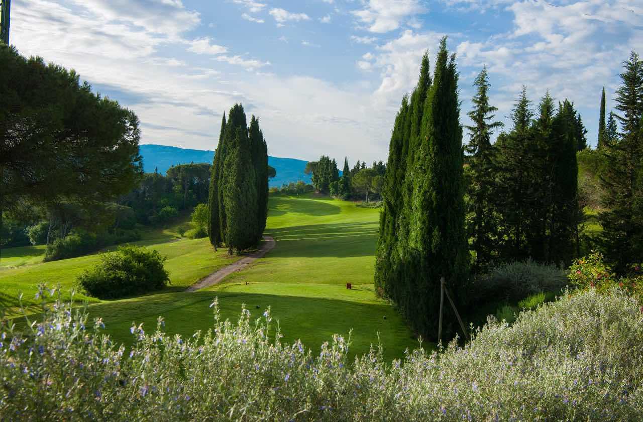 Golf Club of Uccolino greens in summer