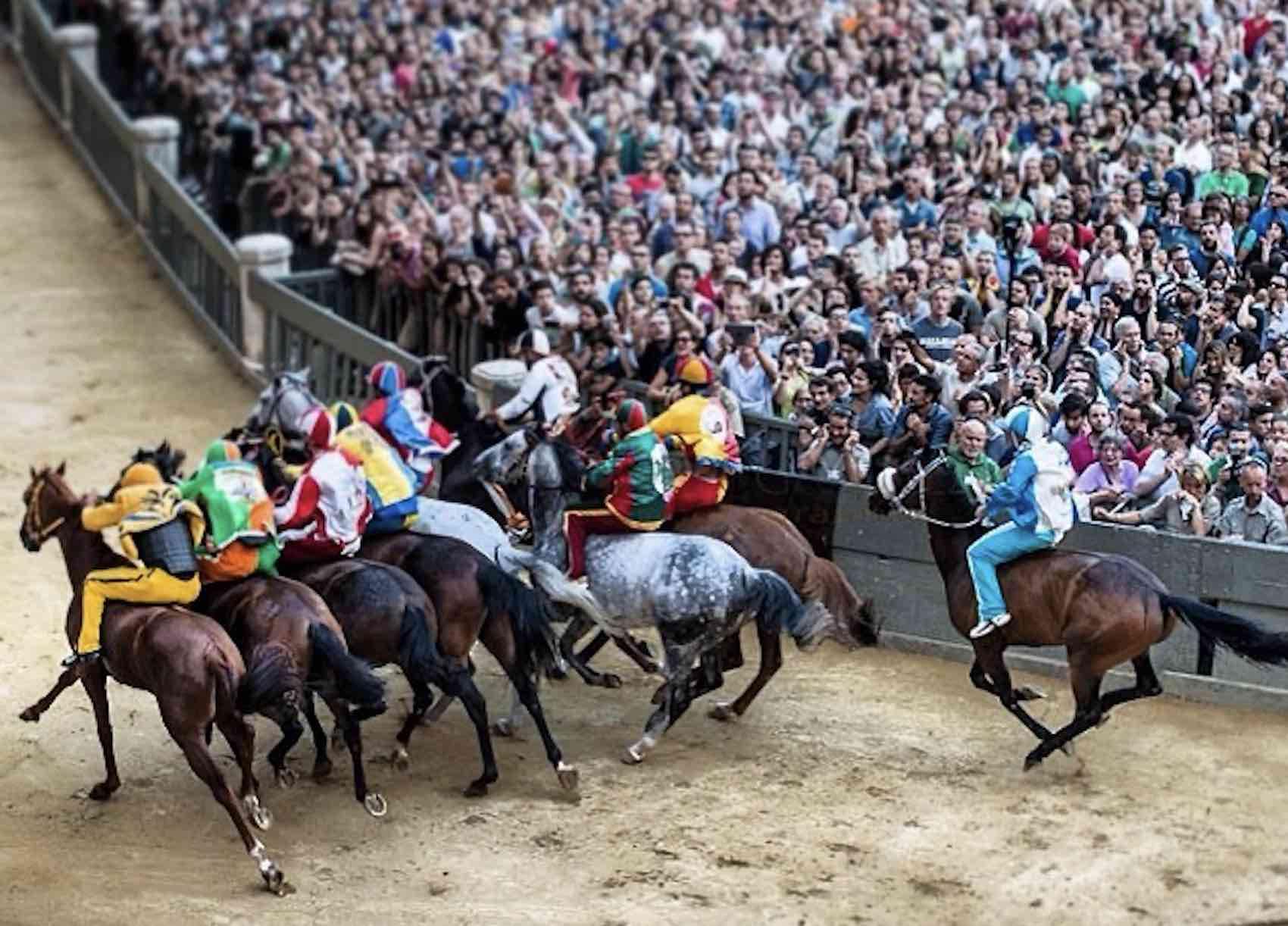 Palio di Siena horse race photogalluzzi