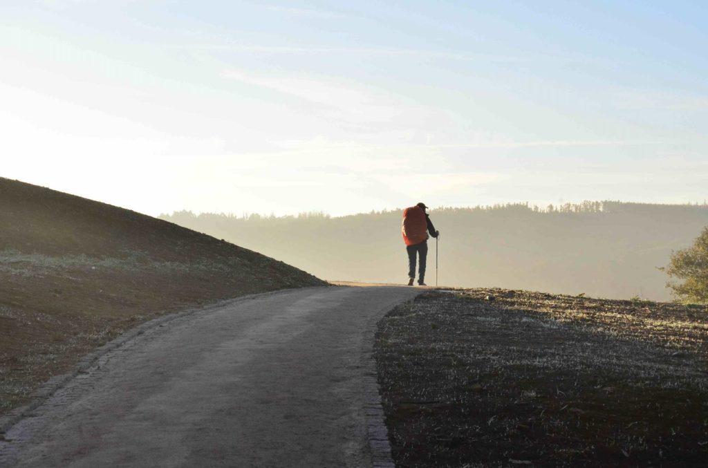 Man walking along a track through the country on the Camino de Santiago