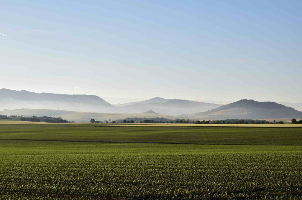 Tracing Coco Chanel's Auvergne roots showing green hills and farmland